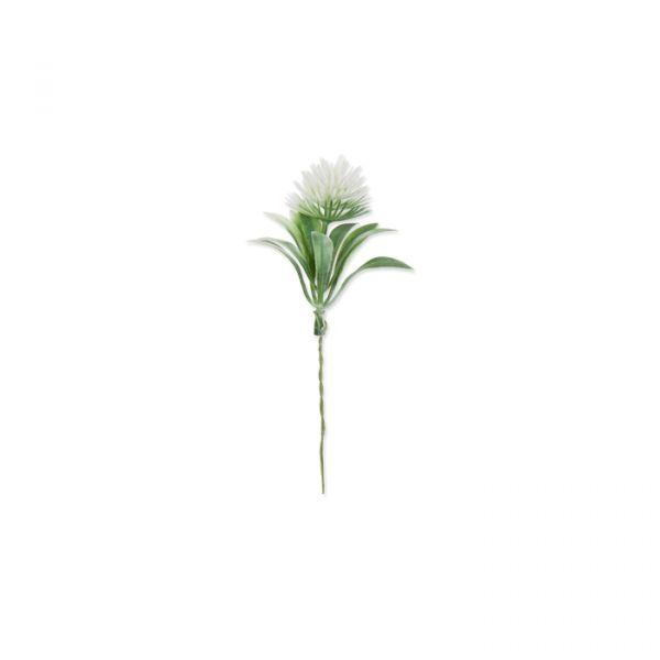 "Florale Deko ""Kugeldistel"" white Hauptbild Detail"