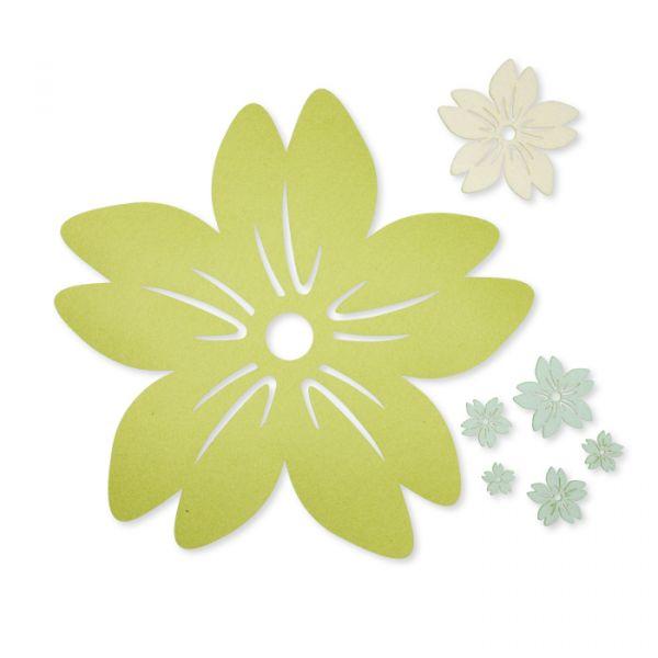 63043-000-291 pale green/cream/light mint (291) Hauptbild Detail